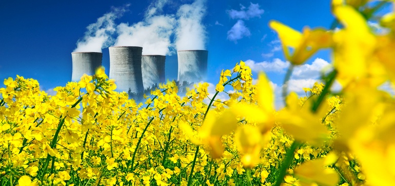 Which Way for Nuclear Energy?